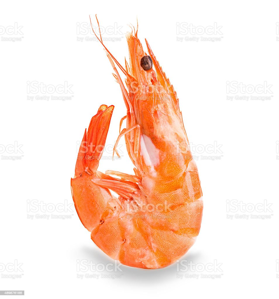 Tiger shrimp. Prawn isolated on a white background. Seafood stock photo