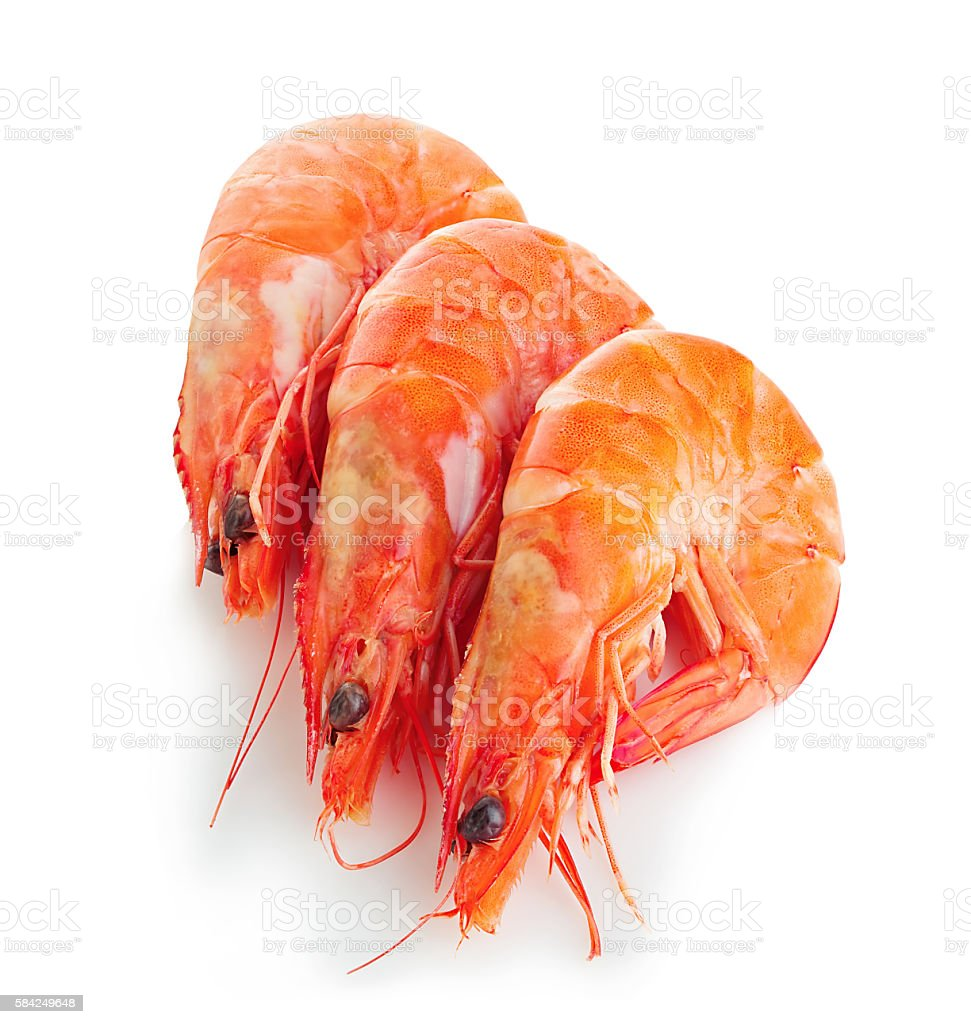 Tiger shrimps close-up isolated on a white background. stock photo