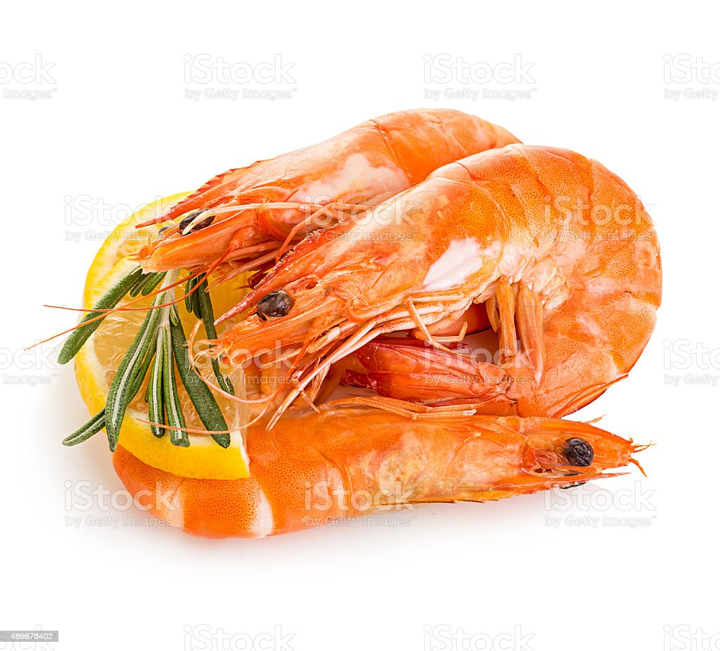 Tiger shrimps with lemon slice and rosemary. stock photo
