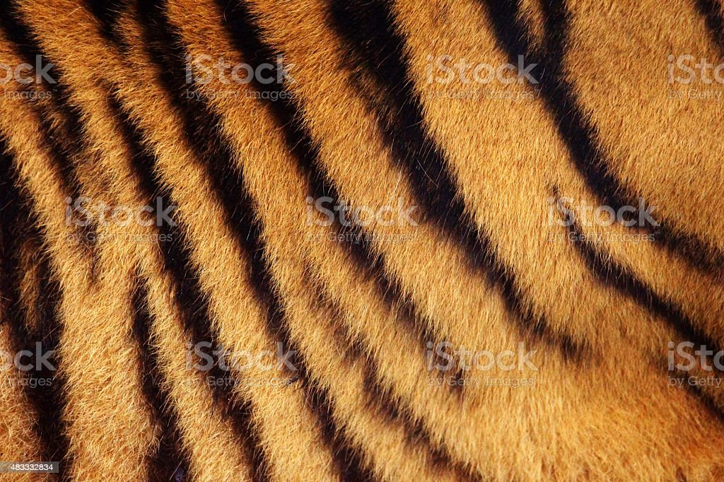 Tiger stripe background stock photo