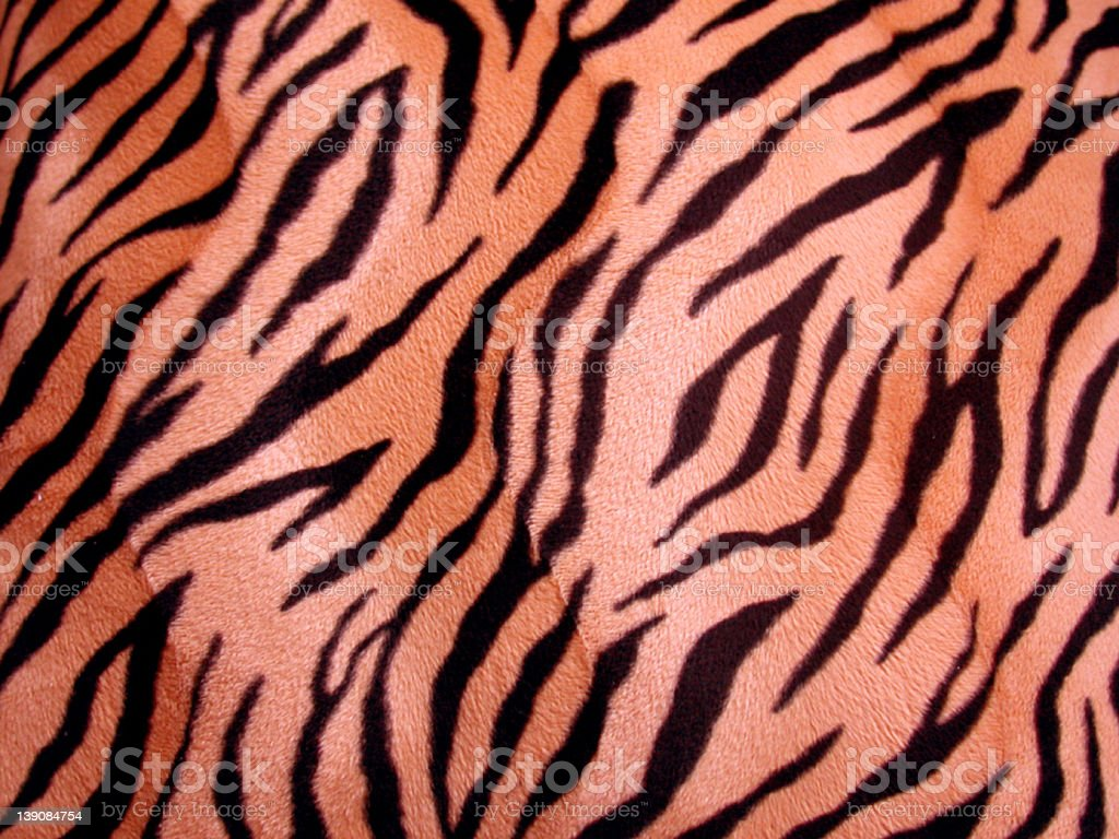 tiger stripes royalty-free stock photo