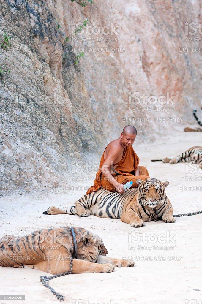Tiger Temple stock photo