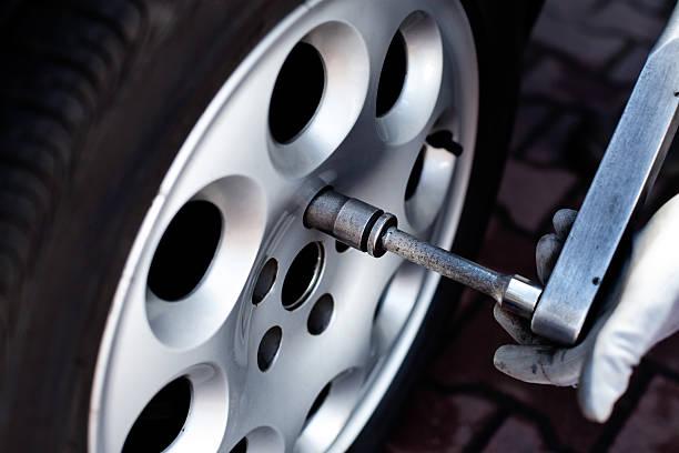 Renforcement roue de noix - Photo