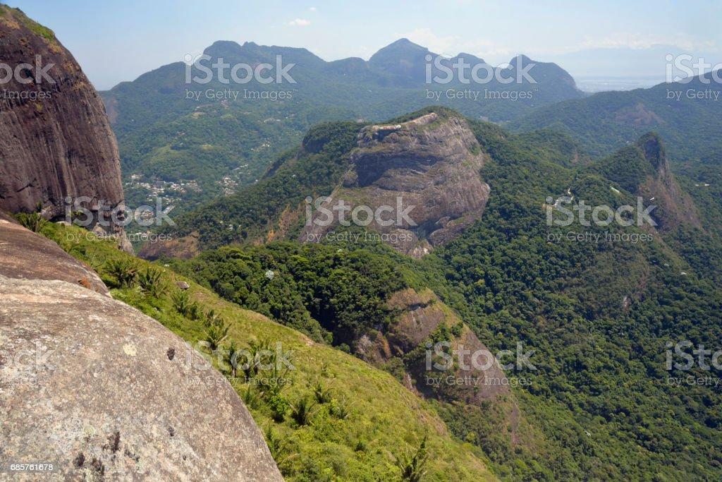 Tijuca Nationaal Park royalty free stockfoto