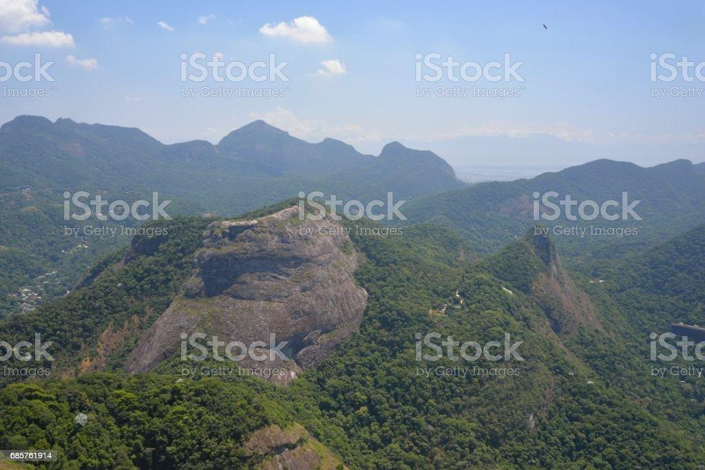 Tijuca National Park royaltyfri bildbanksbilder