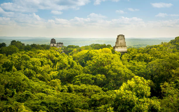 Tikal Guatemala Mayan Ruins Tikal in Guatemala, an ancient Mayan city in ruins surrounded by jungle central america stock pictures, royalty-free photos & images