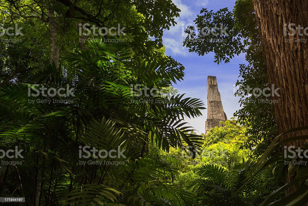 Tikal Guatemala stock photo