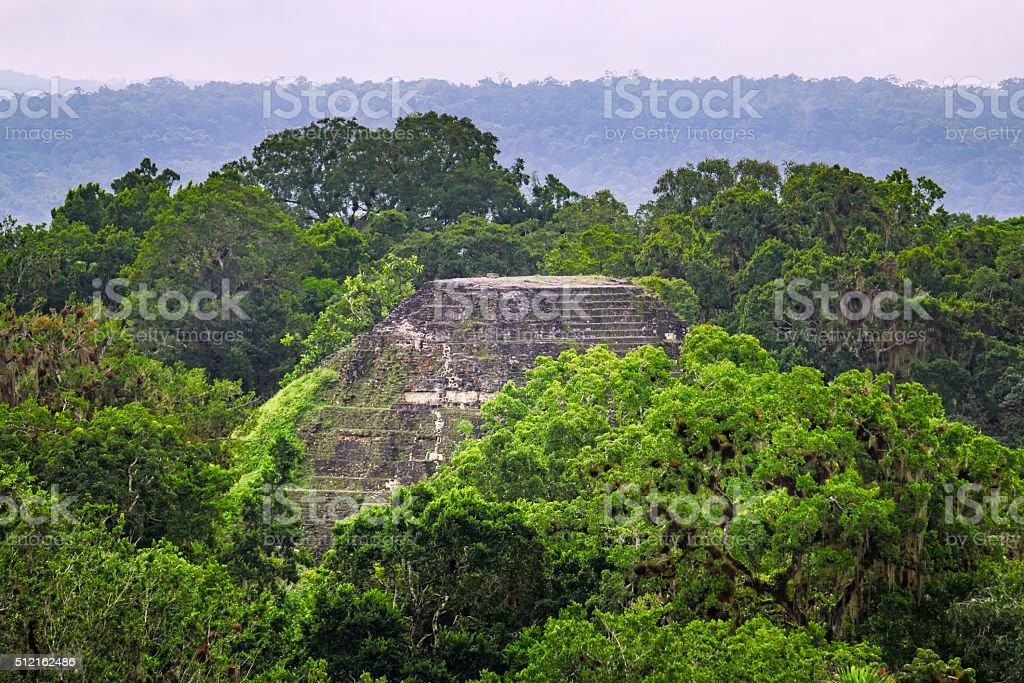 Tikal Mayan Ruins in Rainforest Guatemala stock photo