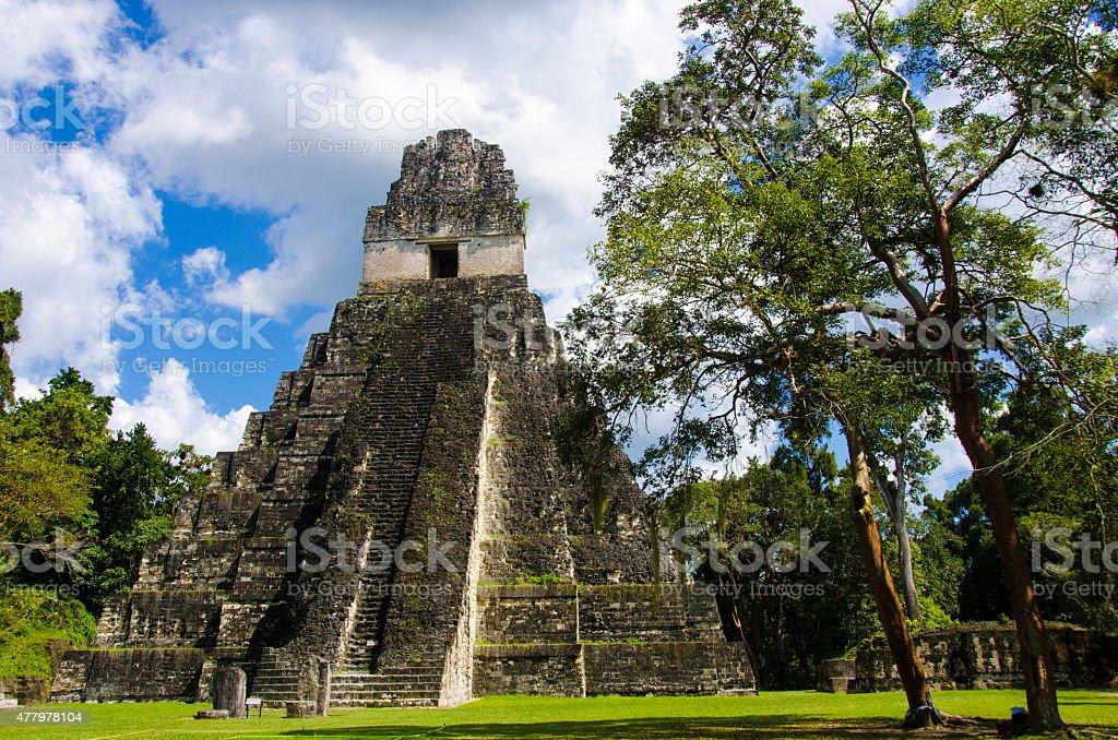 Tikal  Ruins and pyramids stock photo