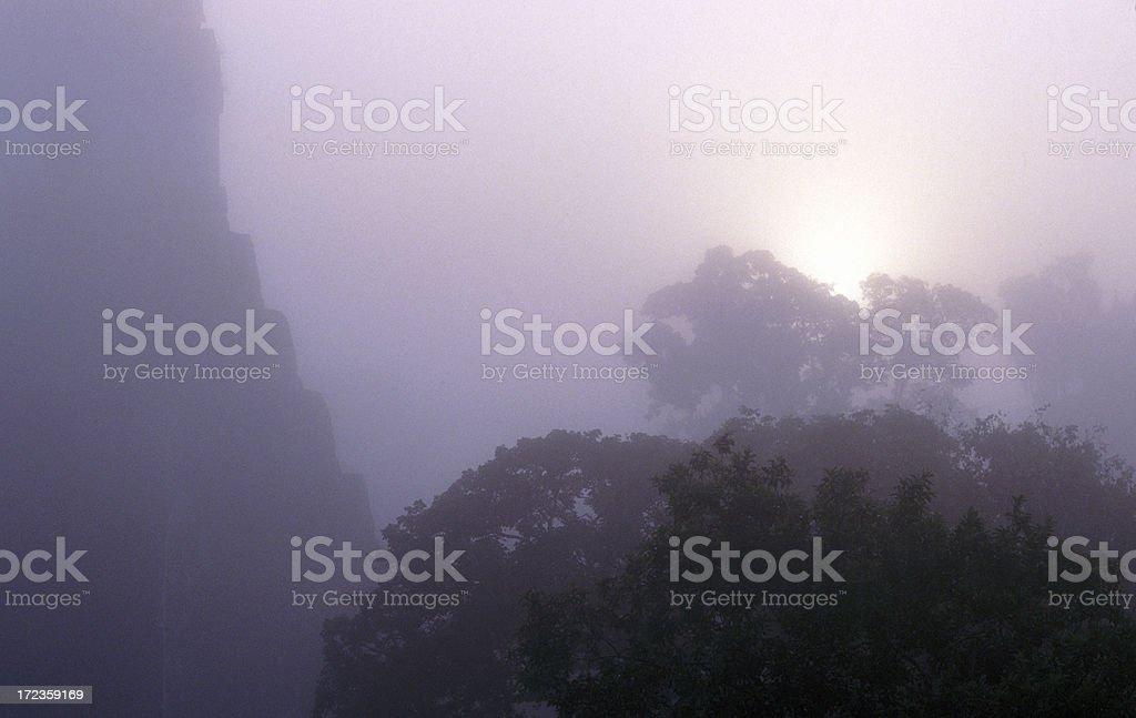 Tikal templo del amanecer foto de stock libre de derechos
