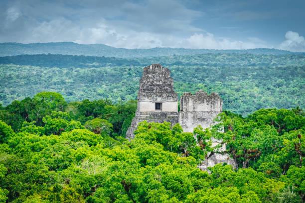 Tikal Temple IV inside Rainforest Maya Pyramid Guatemala stock photo