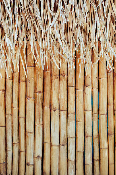 Tiki Background stock photo