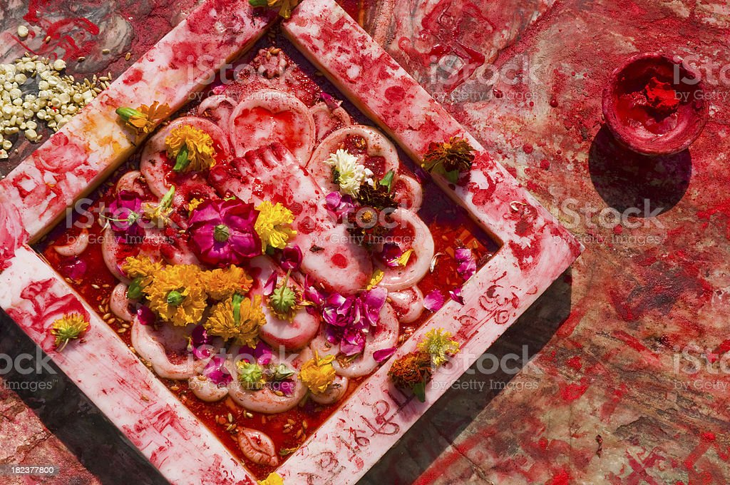Tikka powder offering royalty-free stock photo