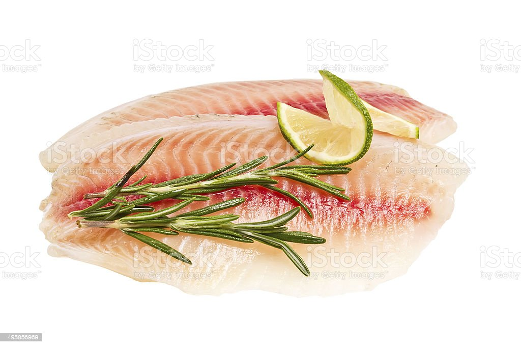 tilapia fillet with a slice of lemon and rosemary stock photo