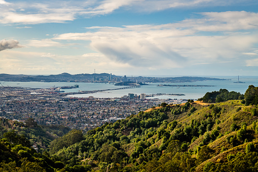 Views from the trails of Tilden Park
