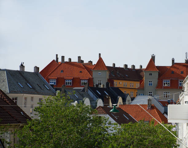 Cтоковое фото Tile roofs of Bergen, Norway and green street lamp