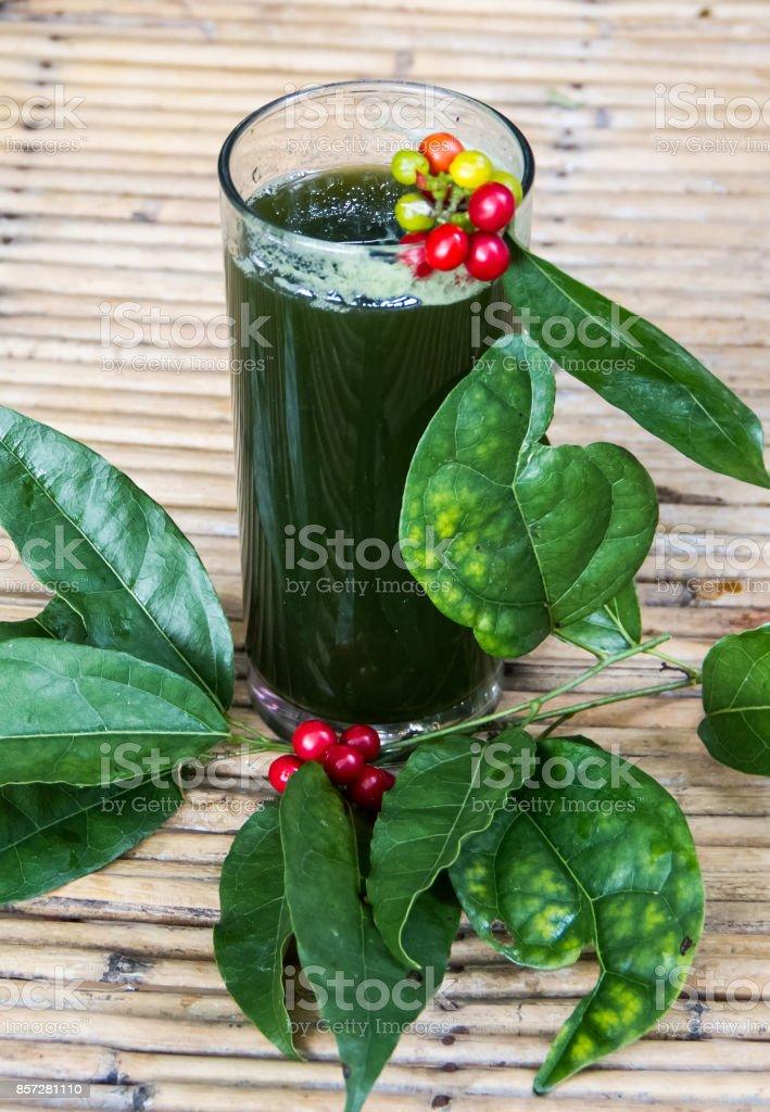 Tiliacora triandra drink stock photo