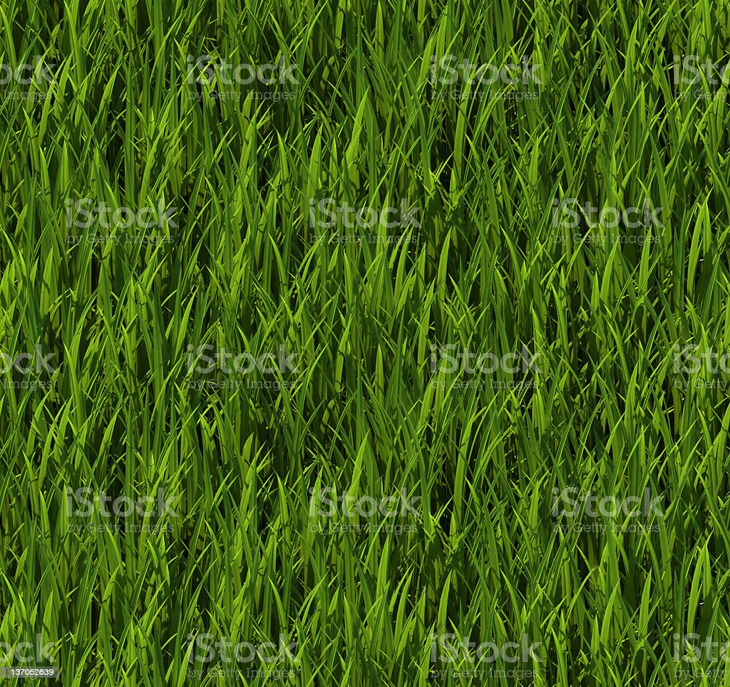 Tiling texture – Grass royalty-free stock photo