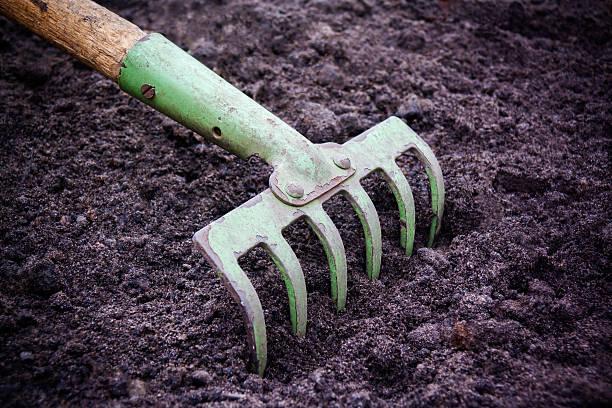 Tillage rake for planting crops. Tillage rake for planting crops. garden hoe stock pictures, royalty-free photos & images