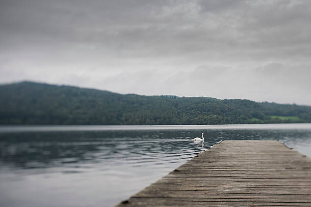 Tilt and shift Lake with wooden  Jetty Tilt and shift Lake with wooden  Jetty. desaturated stock pictures, royalty-free photos & images
