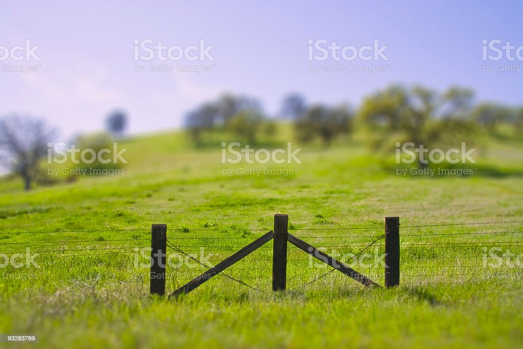 Tilt Shift Gate in the Country stock photo
