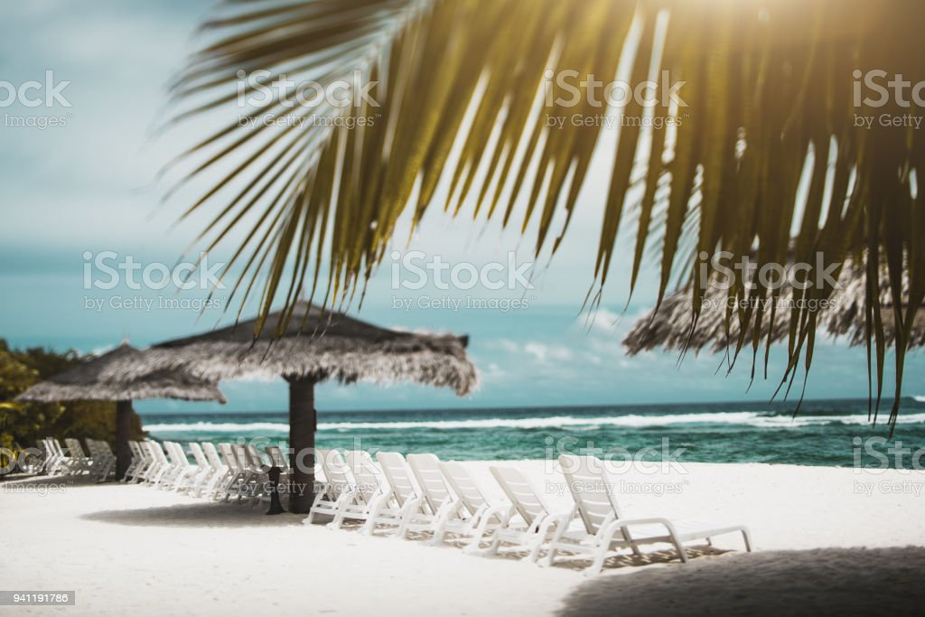 Tiltshift view of sea beach with daybeds, sunshades and palms stock photo