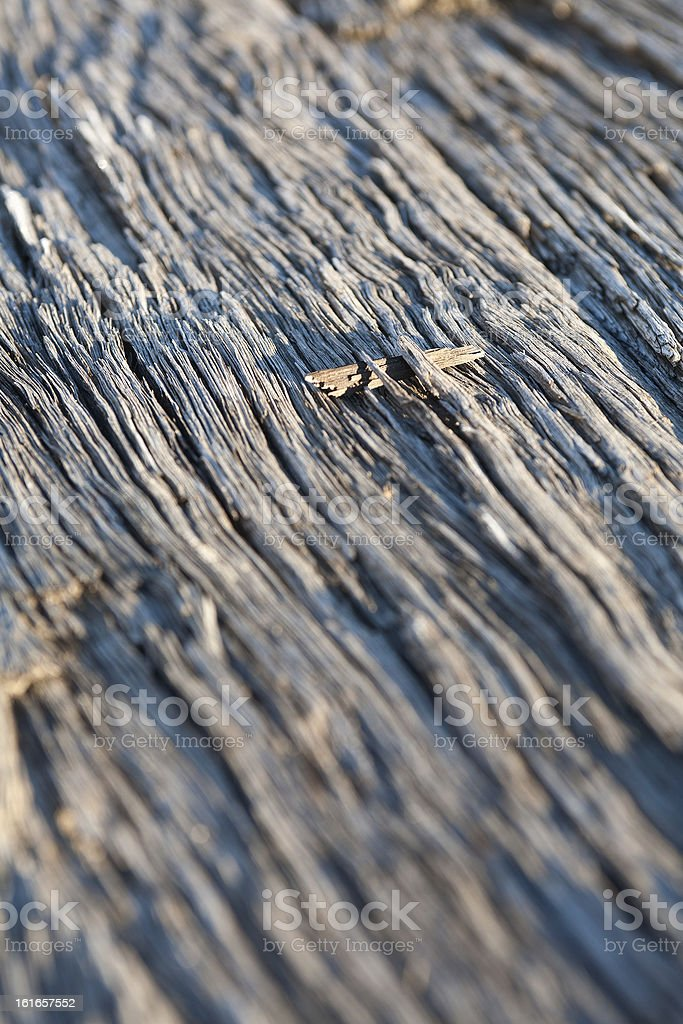 Timber Abstract royalty-free stock photo