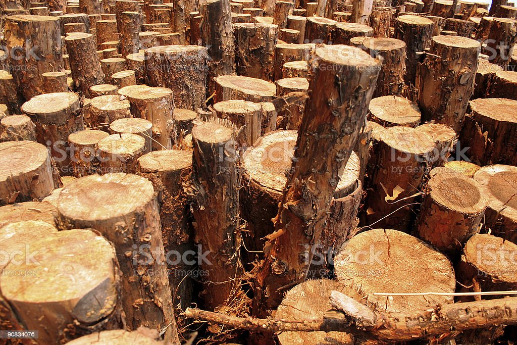 timber background royalty-free stock photo