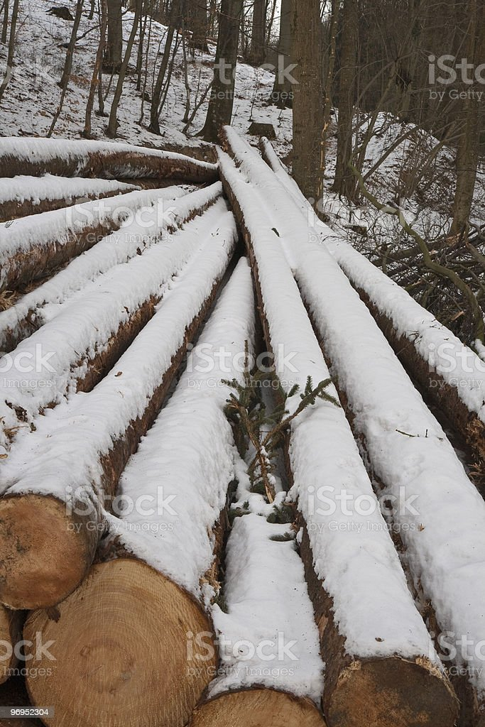 Timber In The Snow royalty-free stock photo
