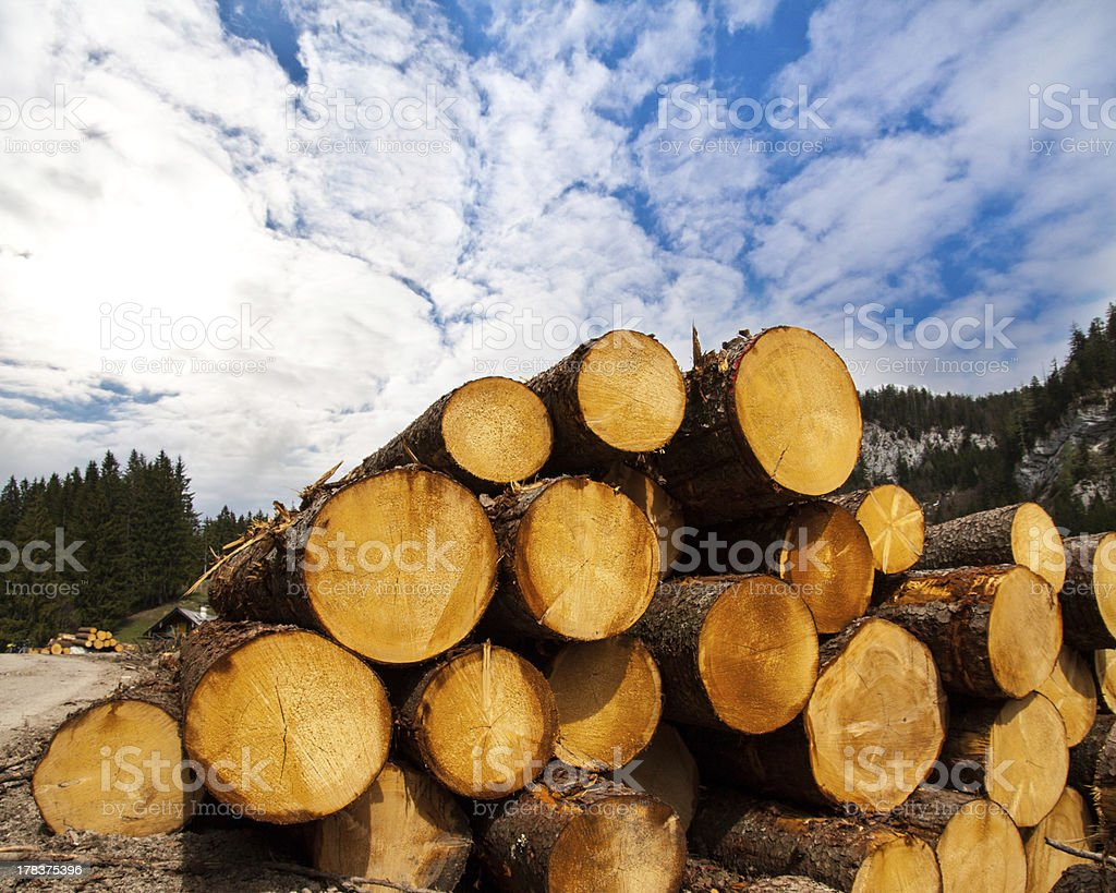 timber logging in Austrian Alps royalty-free stock photo