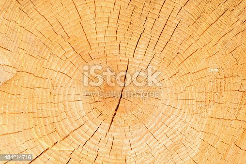 465559373 istock photo Timber natural background. 484214716