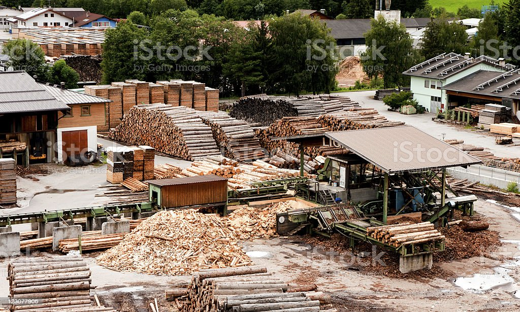 Timber processing stock photo