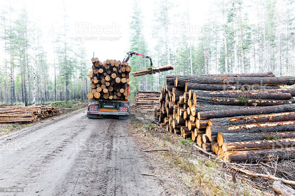 Timber truck on swedish dirt road stock photo
