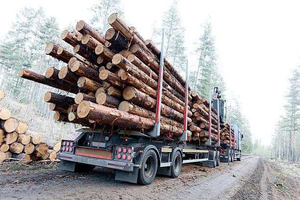 camion di legname in svedese strada in terra battuta - industria forestale foto e immagini stock