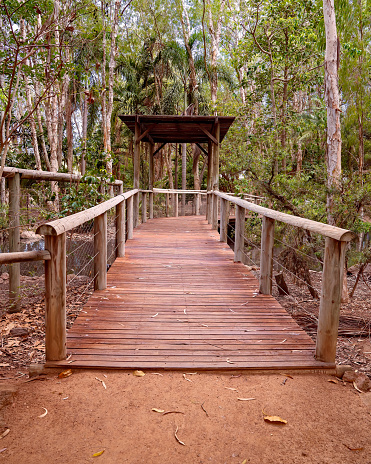 A timber walking track with rails and a shade structure for entering into a forest of trees