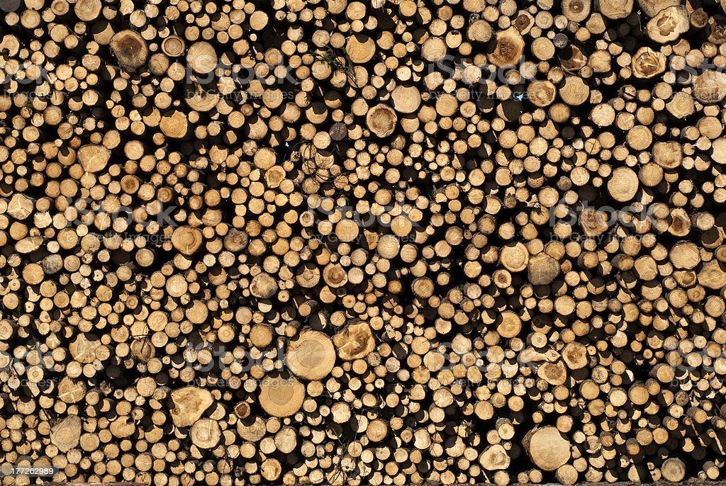 Timber Wall royalty-free stock photo