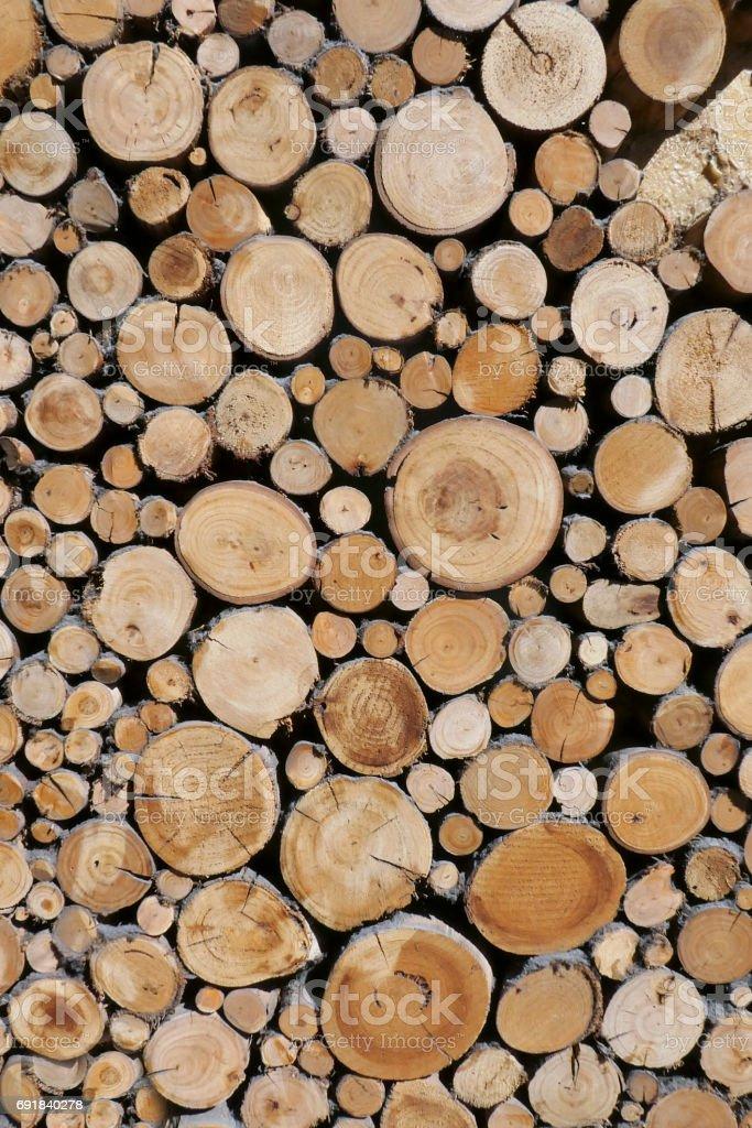 Timber - Wood stock photo