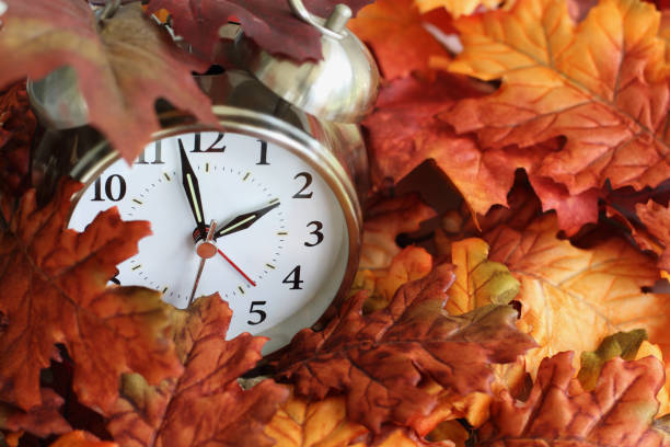 Time Change Daylight Savings Buried in Autumn Leaves Vintage alarm clock buried underneath colorful fallen autumn leaves with shallow depth of field. Daylight savings time concept with clock hands at almost 2 am. time zone stock pictures, royalty-free photos & images