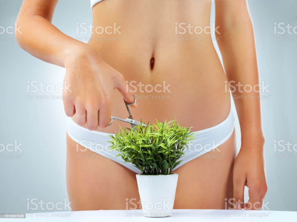 Time for a little ladyscaping stock photo