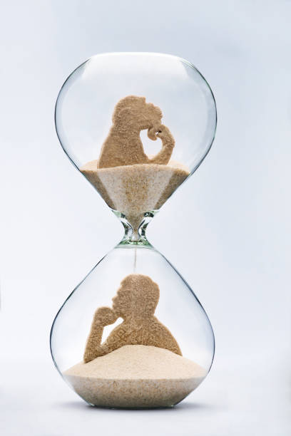 time is evolution - darwin stock photos and pictures