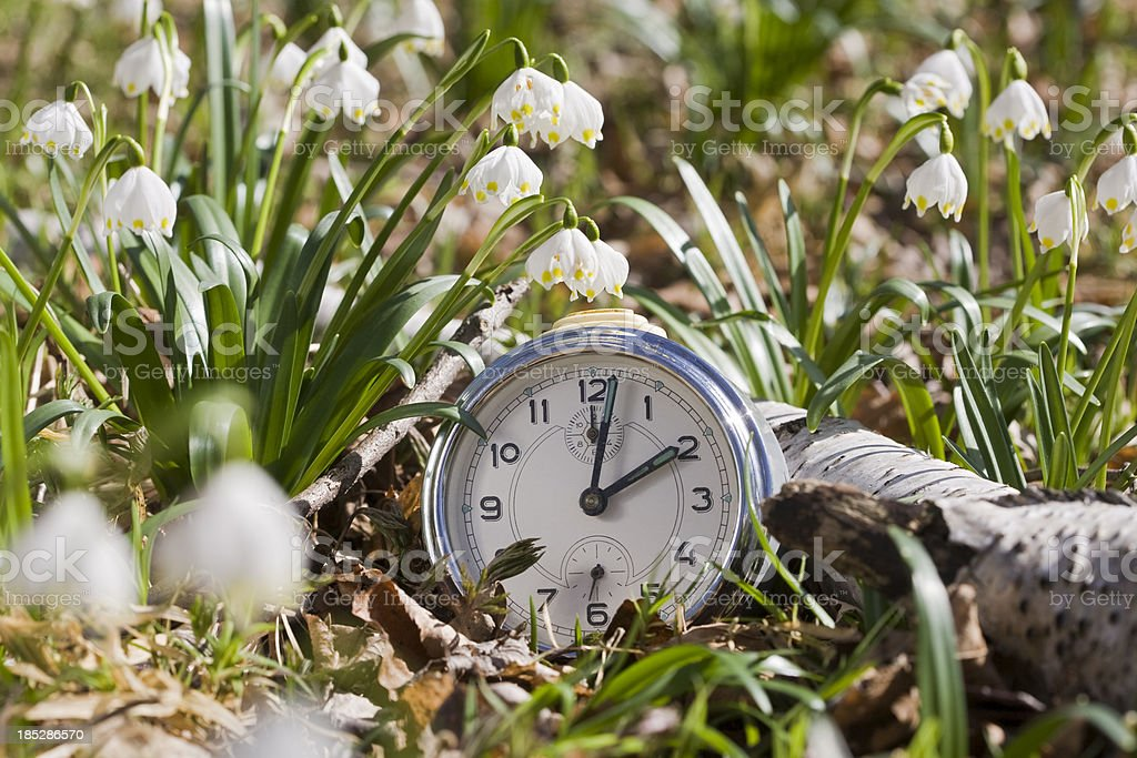 Time of spring flowers stock photo