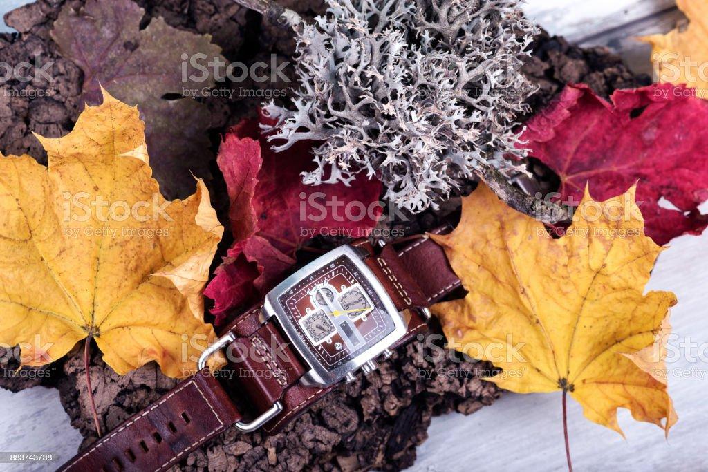 Time Season Leaves Watch stock photo