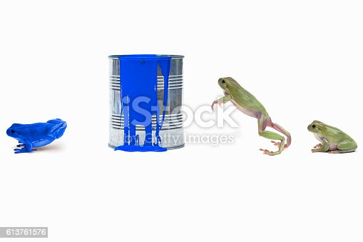 Frogs jumping into paint can and changing color