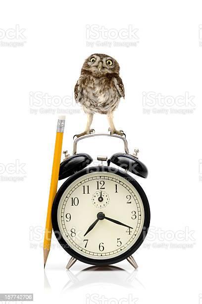 Time to work picture id157742706?b=1&k=6&m=157742706&s=612x612&h=pz4xroeuwsbg7elccswrrdpiz9jjvpz6s aihxko0d0=