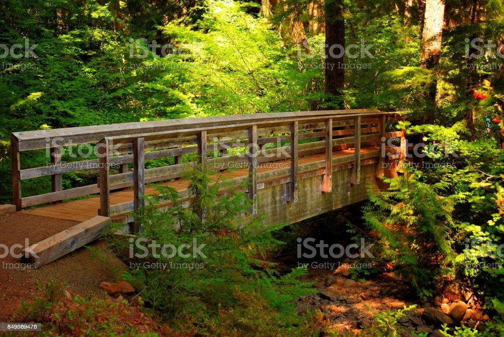 Timothy Lake trail bridge stock photo