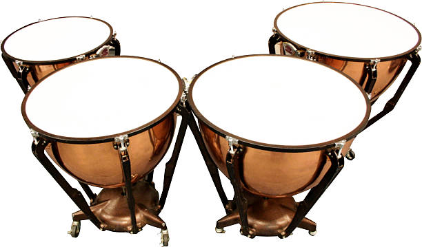 royalty free timpani pictures images and stock photos istock