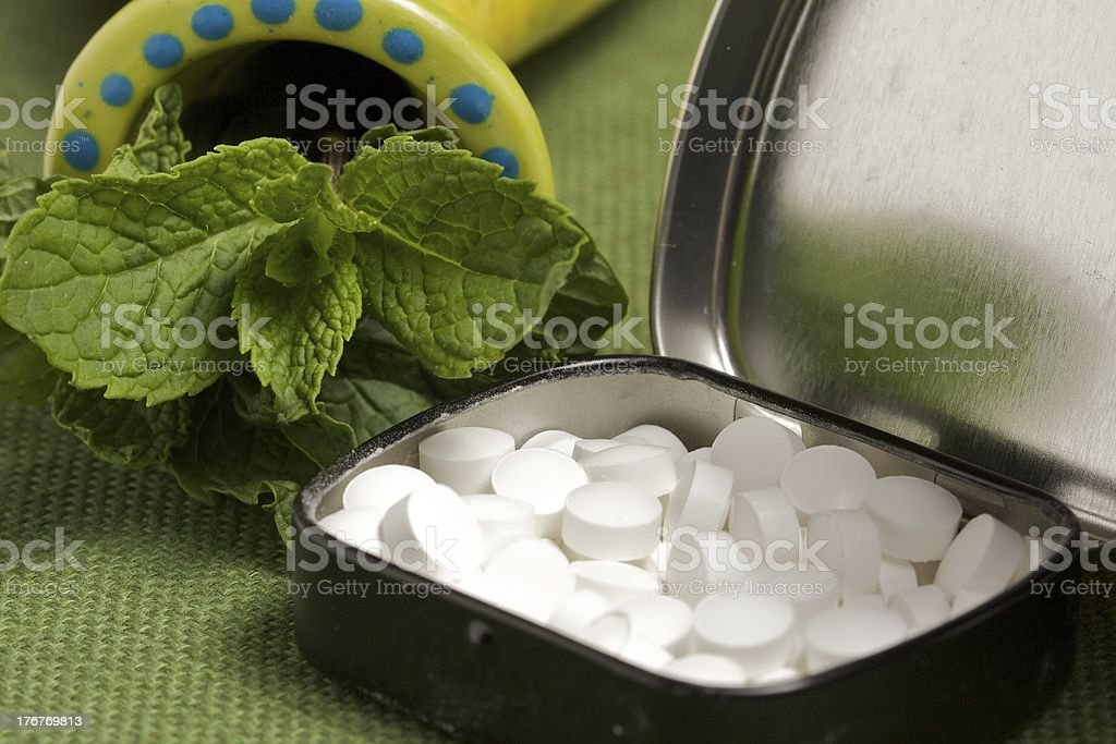 A tin of breath mints alongside a mint plant stock photo