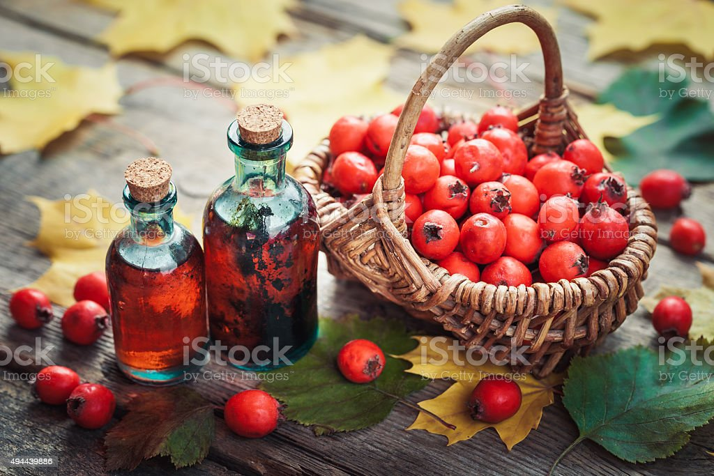 Tincture bottles of hawthorn berries and thorn apples in basket stock photo