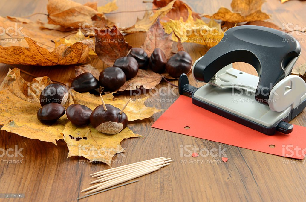 tinker with Chestnut and maple leaf stock photo