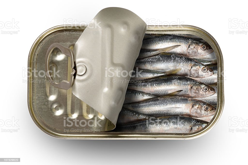 Tinned sardines stock photo